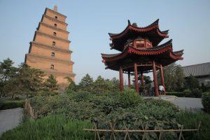 Dia 23 Xian Gran Pagoda de la Oca Salvaje