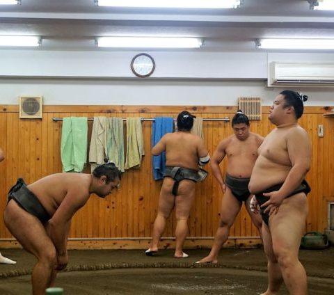 Qué visitar en Japón en 21 días (I)