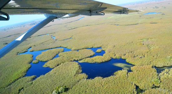 Visión del delta desde avioneta