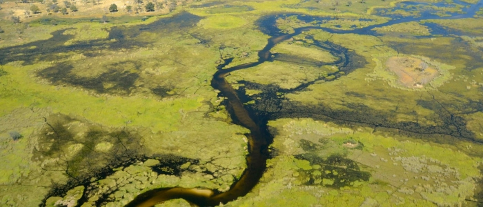 Vuelo por el Delta del Okavango