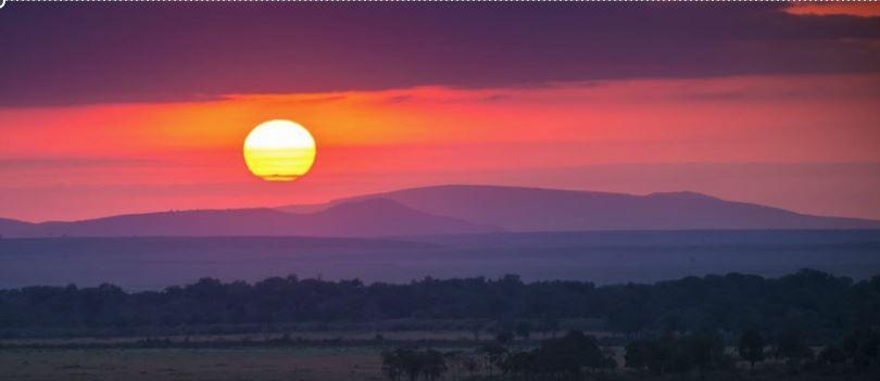 Que hacer en la Reserva Nacional masai mara de Kenia