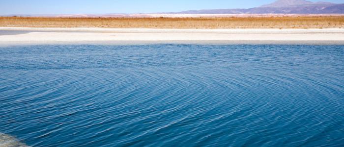 Laguna desierto atacama chile