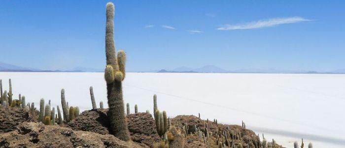 Andes, viaje de moda para los españoles