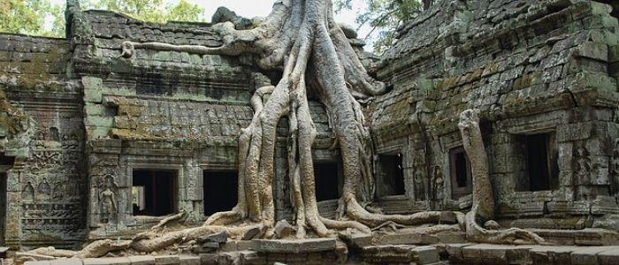 El templo Ta Prohm convice con la selva
